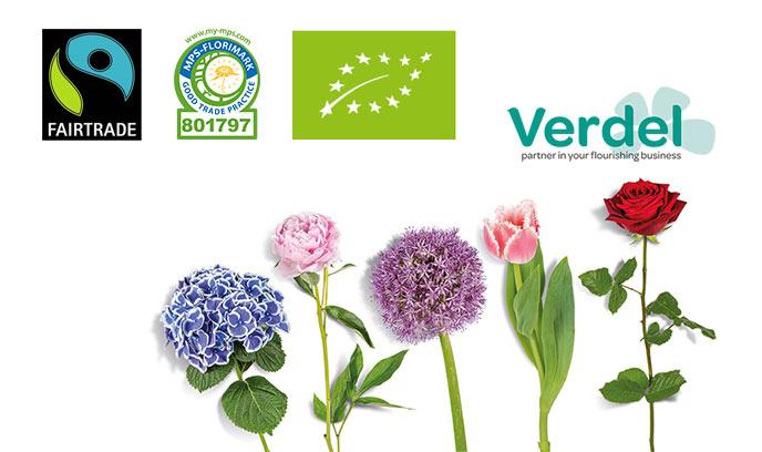Økologisk certificeret leverandør af blomster og planter
